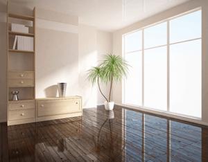 umzugsreinigung -Wohnungsreinigung